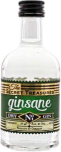 The Secret Treasures Ginsane Dry