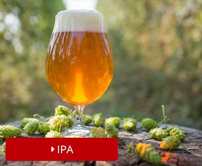 Bier-4-IPA_1